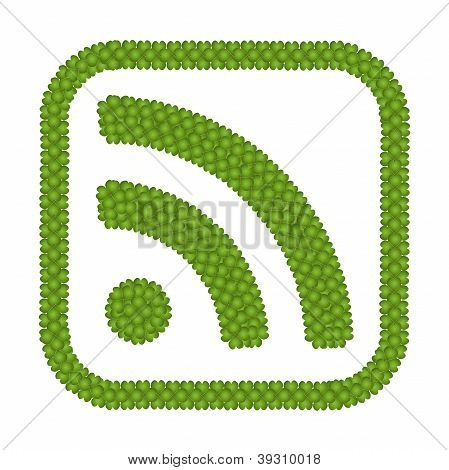 Four Leaf Clove Of Rss Feed Sign In Square Frame