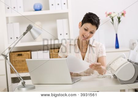 Business Woman Working At Home