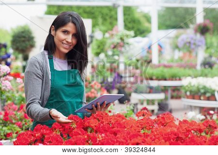 Employee choosing flowers in garden center with tablet pc