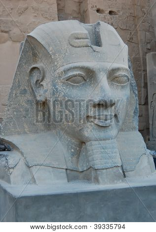 Head Statue Of Ramses II