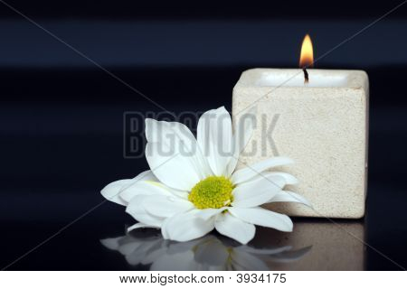 Lite Candle With A Daisy