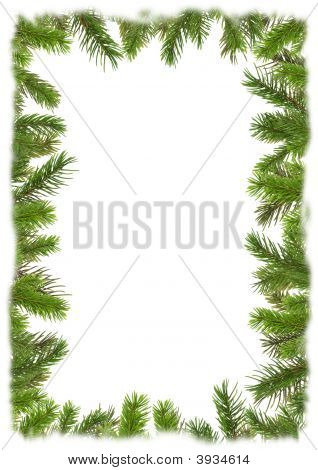 Marco de ramas de un árbol de Navidad