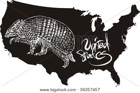 Armadillo And U.s. Outline Map