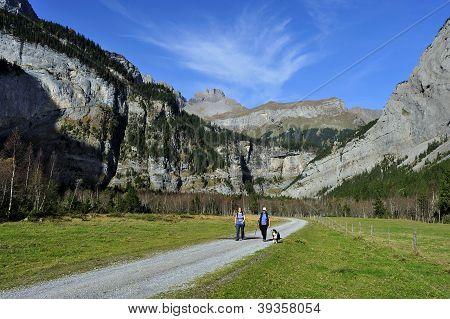 Alpine Walkers