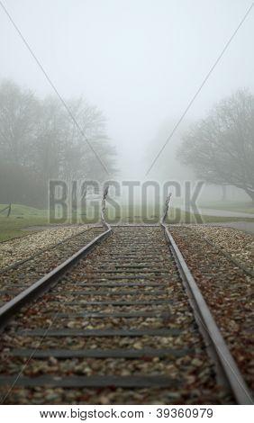 Monument Westerbork In Fog