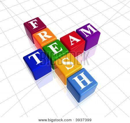 Colour Fresh Team