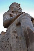 picture of ramses  - Seated Statue Of Ramses II In Luxor Temple - JPG