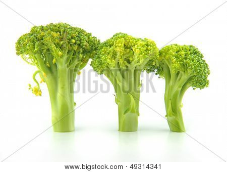 3 broccoli Isolated in white background