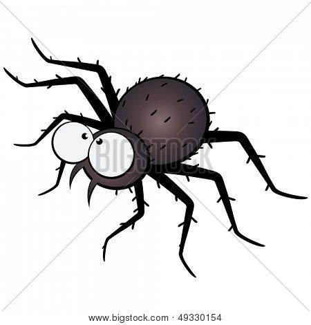 scary spider illustration