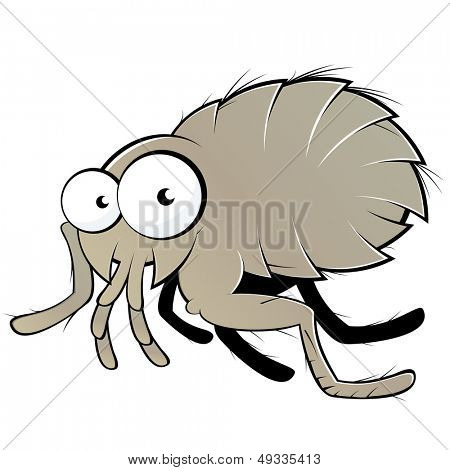 funny cartoon flea
