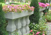pic of garden eden  - A fence in a beautiful garden - JPG