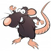 funny cartoon rat