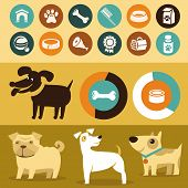 Vector Set Of Infographics Elements - Dogs poster