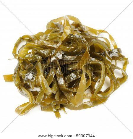 Laminaria (Kelp) Seaweed Isolated On White Background