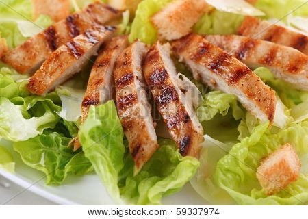 grilled chicken breast on white plate.
