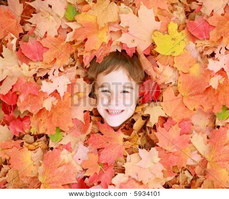 Little Boys Face in Leaves
