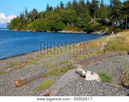Orcas Island Beach