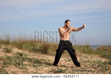 Martial Arts Instructor Exercise Outdoor