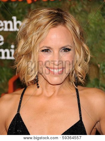 LOS ANGELES - OCT 17:  Maria Bello arrives to the Wallis Annenberg Center for the Performing Arts Gala  on October 17, 2013 in Beverly Hills, CA