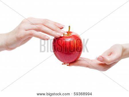 Red Apple Between Woman Hands