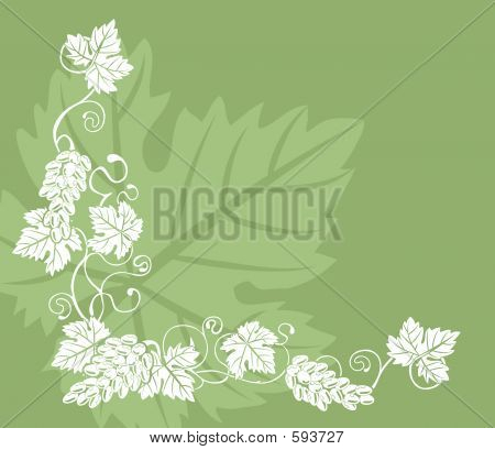 Grape Vine Design Element