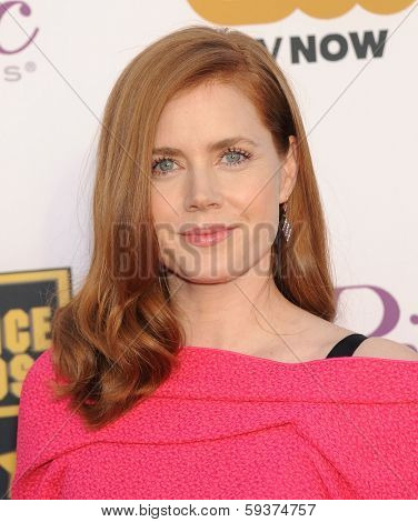 LOS ANGELES - JAN 16:  Amy Adams arrives to the Critics' Choice Movie Awards 2014  on January 16, 2014 in Santa Monica, CA