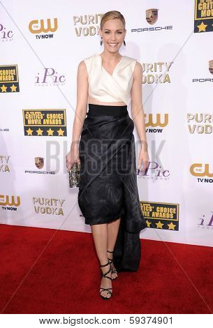 LOS ANGELES - JAN 16:  Leslie Bibb arrives to the Critics' Choice Movie Awards 2014  on January 16, 2014 in Santa Monica, CA