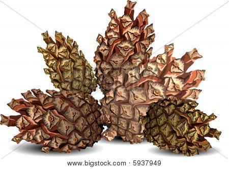 Hill of cones