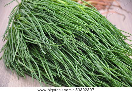 Italian vegetable - Agretti