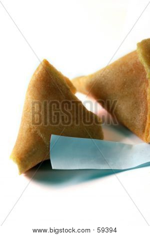 Blank Message In A Fortune Cookie