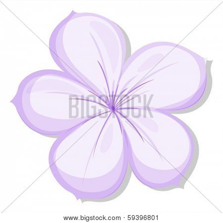 Illustration of a five-petal violet flower on a white background