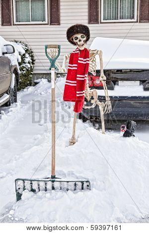 Canadian Skeleton