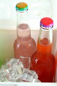 Drinks in glass bottles in mini fridge close up