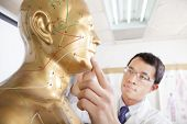 stock photo of piercings  - chinese medicine doctor teaching  Acupoint on Human acupuncture model - JPG
