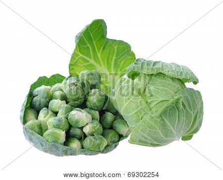 Tiny Brussels Sprouts