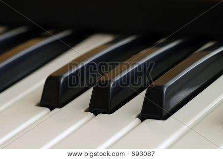 Piano Keyboard Keys