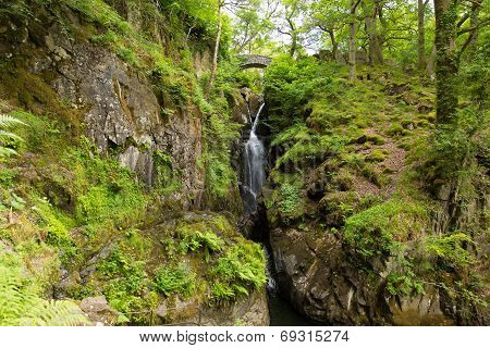 Aira Force waterfall Ullswater Valley Lake District Cumbria England UK in beautiful woodland
