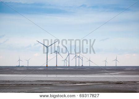 Wind Farm In Mud Flat