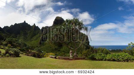 Panorama Of The Na Pali Coast