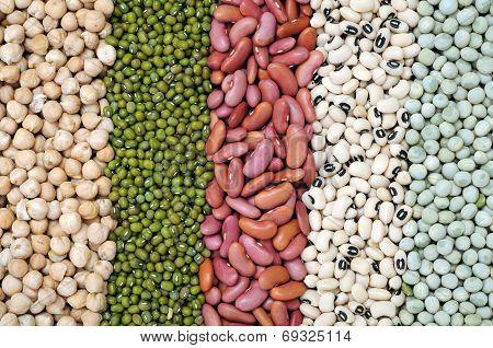 Mix Bean