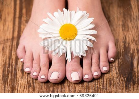 Female feet with spa pedicure and flower