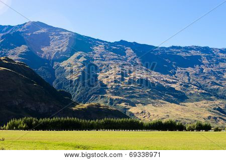 Natural landscape of New Zealand alps and meadow