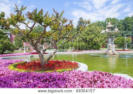 Ornate Swan Styled Fountain In Formal Garden