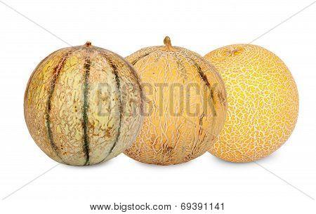 Three Different Sorts Galia Melons