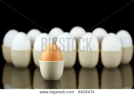 One Brown Egg In Front Of White Eggs