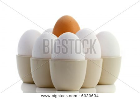 One Brown Egg Surrounded By White Chicken Eggs On Reflecting White Background