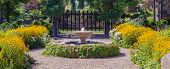 pic of black-eyed susans  - Panorama of a landscaped formal garden path lined with bright yellow black eyed Susans curves around a fountain draped with Virginia Creeper on its way to a larger garden area behind a custom designed wood gate - JPG