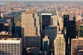 picture of high-rise  - Vertical New York - JPG
