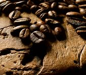 picture of caucus  - coffee beans  - JPG