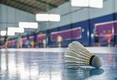 pic of shuttlecock  - A shuttlecock on the ground in the indoor Badminton court - JPG